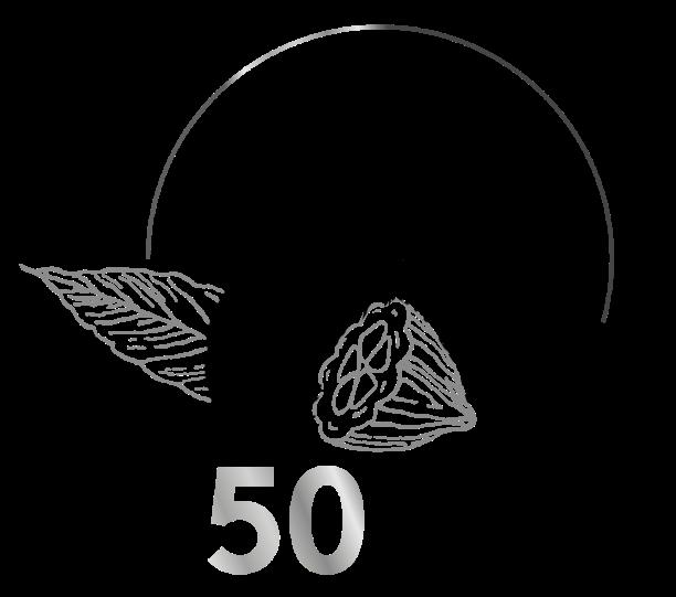 2019-Best50